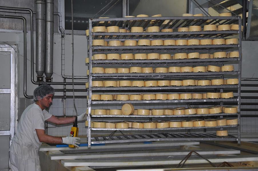 mlekoprodukt sir kackavalj proizvodnja