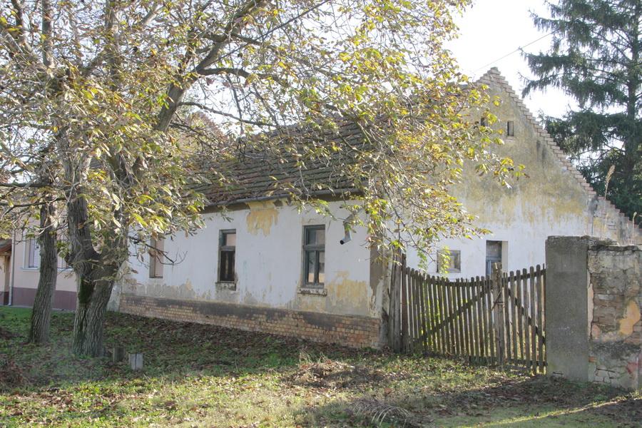 jesen-u-banatu-0002_foto-jovan-njegovic-drndak