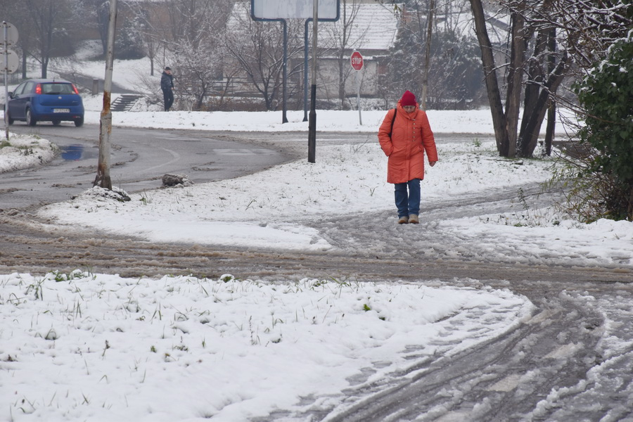 njegovic drndak jovan photo 0002_prvi sneg