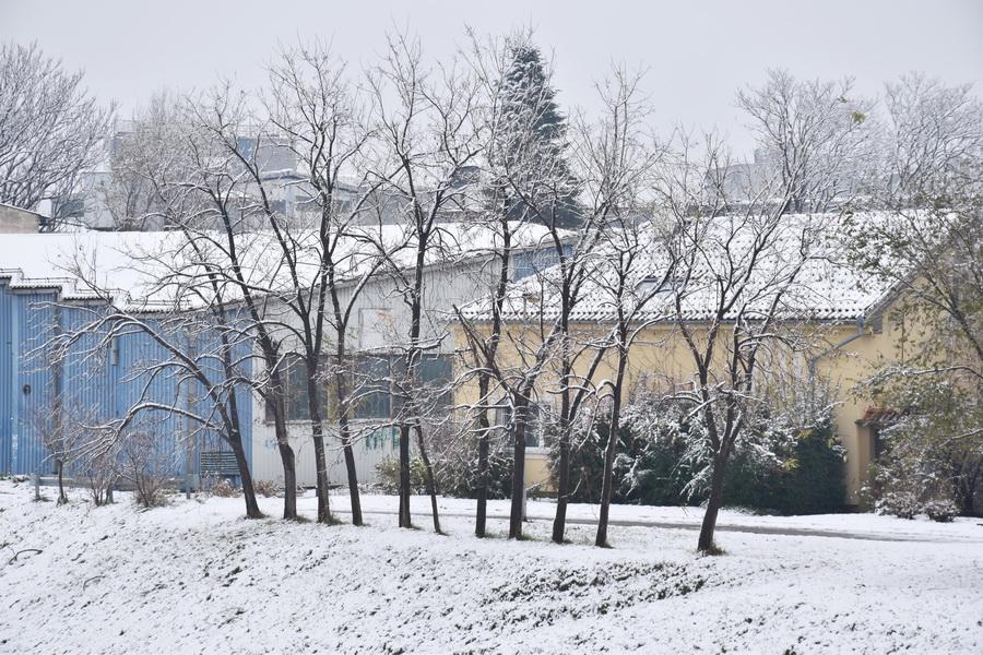 njegovic drndak jovan photo 0006_prvi sneg