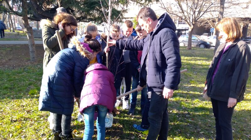 """MESNA ZAJEDNICA """"DOSITEJ OBRADOVIĆ"""": Učenici sadili breze"""