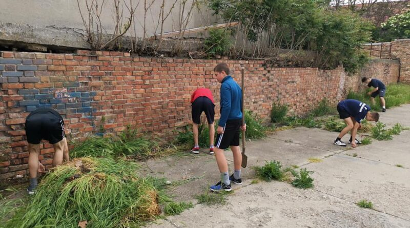 "BRAVO ZA VESLAČE ""BEGEJA"": Počupali korov, sredili prostorije"