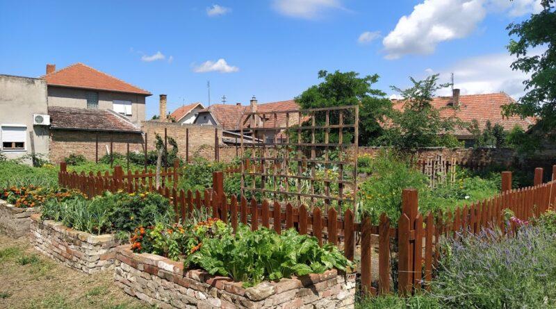 U BIO-BAŠTI POLJOPRIVREDNE ŠKOLE: Uzgajanje biljaka omiljeni deo nastave