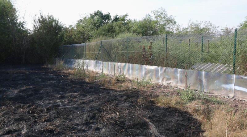 ČESTEREG: Požar kod fazanerije