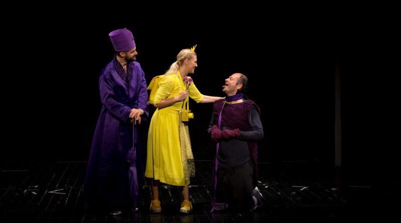 2-Nevid-teatar-Princeza-Zlatka-Foto-Agencija-Magma-1