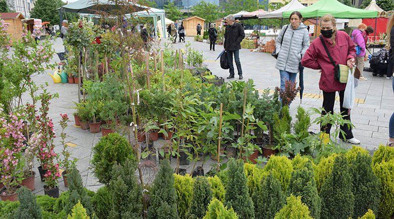 9 zelenilo pogodno za vrtove